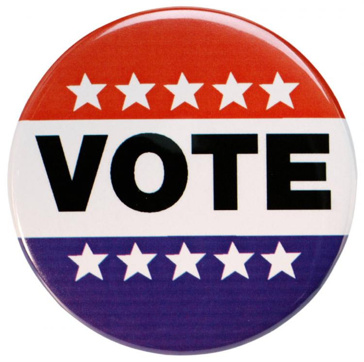 image of vote-button